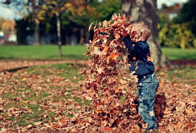 Pierwszy dzień astronomicznej jesieni to dzień tak zwanej równonocy jesiennej.