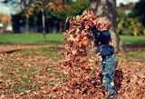Równonoc jesienna 2021. Kiedy jest pierwszy dzień jesieni 2021? Kiedy zaczyna się jesień? [astronomiczna i kalendarzowa]