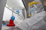 Południowoafrykańska mutacja koronawirusa wykryta we Wrocławiu