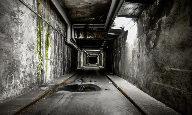 """Te miejsca skrywają mrożące krew w żyłach tajemnice... Duchy, dziwne odgłosy, nietypowe zapachy, a także niepokojąca atmosfera. To wszystko sprawia, że niektóre z miejsc w Kujawsko-Pomorskiem zyskały miano nawiedzonych. Czy wszystkie takie są? Trudno stwierdzić. Musicie przekonać się sami. Mówi się, że w każdej miejskiej legendzie znajdziemy ziarnko prawdy. W naszej galerii przedstawiamy miejsca, w których - podobno - straszy. To opuszczone domy albo obiekty z niezwykłą historią. Ostrzegamy! Niektóre z tych miejsc mogą odwiedzić tylko osoby o mocnych nerwach. Czytaj dalej. Przesuwaj zdjęcia w prawo - naciśnij strzałkę lub przycisk NASTĘPNEPOLECAMY TAKŻE:Opuszczone miejsca w Toruniu i regionie. Oni nie boją się tam zaglądaćPustostany """"z tradycjami"""" w Toruniu. Niektóre budynki stoją opuszczone już od kilkunastu lat"""
