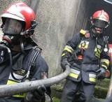 12 tys. indyków spaliło się żywcem