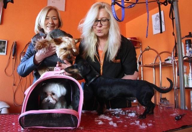 Przed świętami oblężenie w kieleckim salonie piękności dla psów. Było wiele znanych osób oraz…DodaWłaścicielka Omni, Elżbieta Pytlik ze swoim Dyziem i Ewa Mikulska, właścicielka salonu Dino.