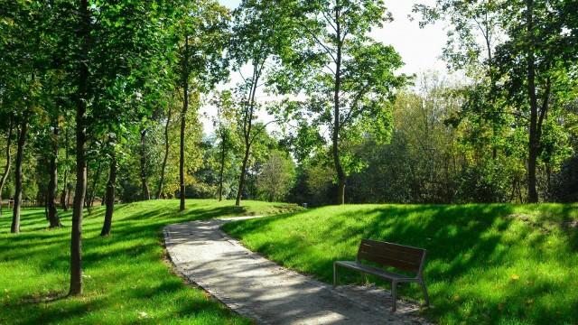 W Poznaniu przybywa terenów do wypoczynku. Jednym z takich miejsc jest zrewaloryzowany park przy ul. Browarnej, który można teraz oglądać w pięknych, jesiennych barwach.Przewiń w prawo, by zobaczyć zdjęcia nowego parku >>