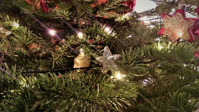 Ozdoby choinkowe mają swoją symbolikę. Dlatego dawniej tak naprawdę nic, co znalazło się na świątecznym drzewku, nie było przypadkowe.