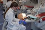 Lekarze dentyści z UMB najlepiej w Polsce zdali Lekarsko-Dentystyczny Egzamin Końcowy