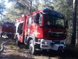 Pożary lasów w pow. hajnowskim. Prawdopodobnie to podpalenia (zdjęcia)