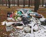 Nie uwierzycie, ale wciąż są ludzie, którzy wyrzucają śmieci do lasu. Tym razem ktoś podrzucił odpady w okolicy Zielonej Góry Zatonia