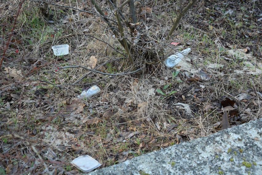 Co wyrzucają na chodniki i trawniki mieszkańcy w Zielonej...
