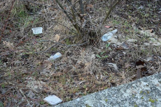 Co wyrzucają na chodniki i trawniki mieszkańcy w Zielonej Górze? Kostkę twarogu, połówkę kurczaka, kości, chleb, ziemniaki, owoce...