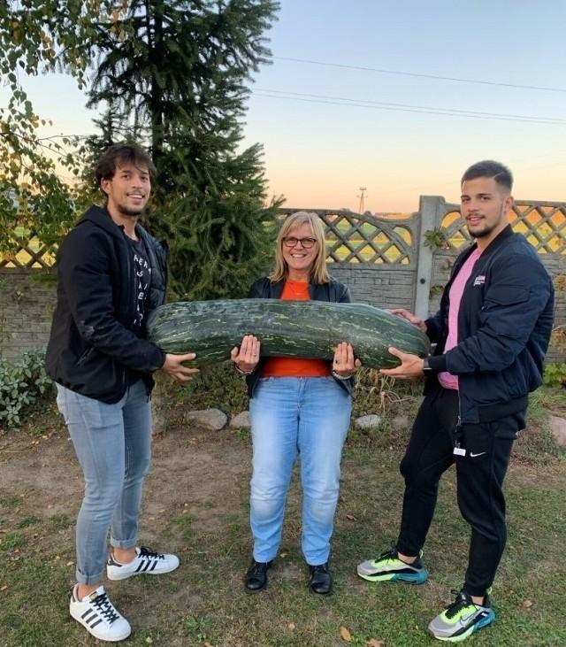 W Wielkopolsce udało się wyhodować 40-kilogramową cukinię! Zasadzona w sierpniu cukinia urosła na działce pani Bożeny Puglisi z Gniezna. Prawdopodobnie jest to rekord w mieście. Gratulujemy takiego osiągnięcia i życzymy kolejnych takich okazów.Zobacz zdjęcia wyjątkowego warzywa -->