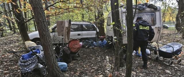Bezdomni założyli obozowisko w lesie koło Trasy Północnej