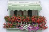 Które kwiaty na balkon śmiecą najbardziej, a które najmniej? Zobacz, co posadzić, a czego unikać