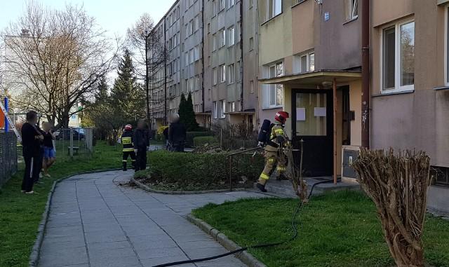 Do zdarzenia doszło w czwartek na ul. Rogozińskiego w Przemyślu. Wyjechały trzy zastępy strażaków. Na miejscu okazało się, że podczas prac remontowych, w piwnicy bloku zapaliła się płyta ociepleniowa. Na szczęście ogień nie zdążył się rozprzestrzenić.Zobacz też: Na parkingu przy Tesco na ul. Lwowskiej w Przemyślu spłonął samochód