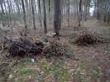 Tajemnicza śmierć w lesie w Hadlach Szklarskich. W aucie znajdowały się zwłoki kobiety i żywe, czteromiesięczne niemowlę