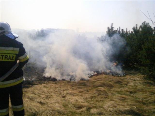 Przez dwa dni strażacy gasili 19 pożarów.