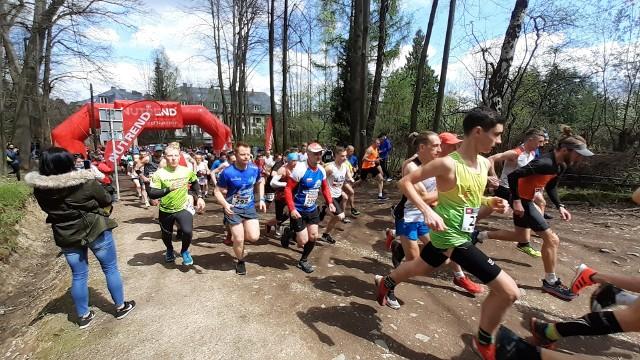 W biegu głównym Goniacki w Bielsku-Białej na 12 km  wystartowało ponad 200 osób