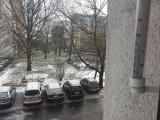 Wiosenny atak zimy w Łodzi. Poprószył śnieg, lekki mróz...