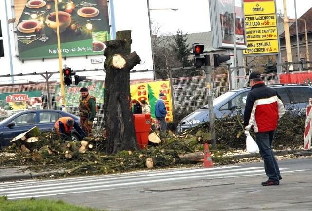 To roboty prowadzone przez inną firmę. Ścinano usychające drzewo, prowadząc poważniejsze prace, niż tylko podcinanie krzaków. I nie zajęto ulicy.