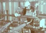 Urodziny firmy Anwil. 52 lata temu powstały Zakłady Azotowe Włocławek [zdjęcia z budowy PCW]