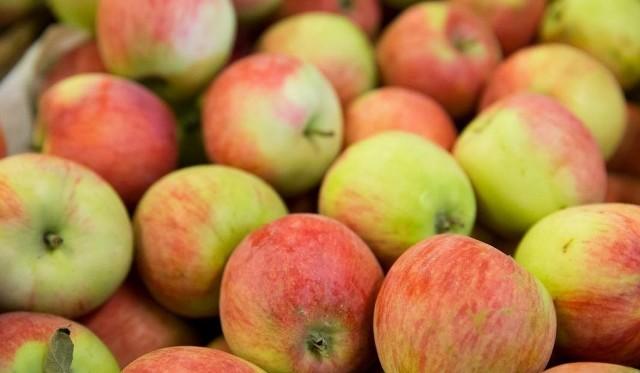 Polskie jabłka zostały wycofane ze sklepów szwedzkiej sieci handlowej