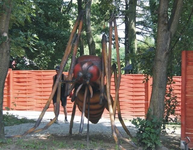 Park będzie urządzony w formie ścieżki edukacyjnej. Będzie można poczytać informacje o konkretnym owadzie.