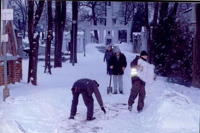 Chłopcy z ośrodka wychowawczego podczas pracy na cmentarzu