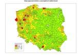 W lasach woj. śląskiego najwięcej dzików w Polsce [MAPA]