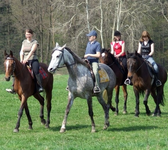 W Grudziądzu zapewniają, że jeszcze w tym roku konie w Świętoborcu przyniosą radość wypoczywającym tu młodym ludziom.