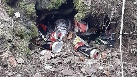 Wójt Parchowa zbiera w lesie śmieci.Zobacz także: Kolejne dzikie wysypisko na terenie miasta - teren zostanie uprzątnięty, ale problemu to nie rozwiązuje: