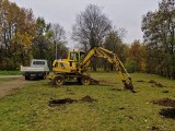 Oryginalny park powstaje nad zalewem w Kielcach. Każde drzewo będzie miało patrona [ZDJĘCIA]