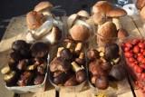 """Grzybiarze słono sobie liczą za zbiory """"na życzenie"""". To ceny grzybów w Kujawsko-Pomorskiem"""