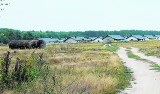 Mieszkańcy Suchej w Zielonej Górze martwią się o kanalizację przy pobliskiej inwestycji. Ścieki z budowy idą do ziemi?