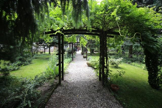 Parafialny Ogród Botaniczny w Bujakowie to miejsce pełne roślin, rzeźb czy kapliczek. Zobacz kolejne zdjęcia. Przesuwaj zdjęcia w prawo - naciśnij strzałkę lub przycisk NASTĘPNE >>>