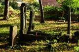 """Zapomniany cmentarz w Brętowie. Tu spoczywa """"Weiser Dawidek"""" [Zdjęcia]"""