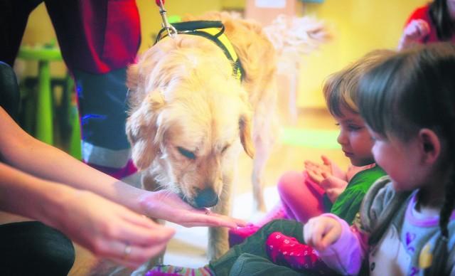 Podczas zajęć dzieci uczą się, jak bezpiecznie podchodzić do psa