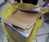 Ktoś zapakował koty w pudełko kartonowe i zafoliowane porzucił na przystanku MPK! ZDJĘCIA
