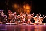Forum: Taneczny karnawał