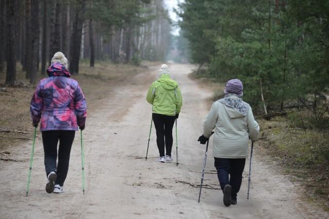 W weekend warto wybrać się na spacer. Nasze okolice są przecież piękne!