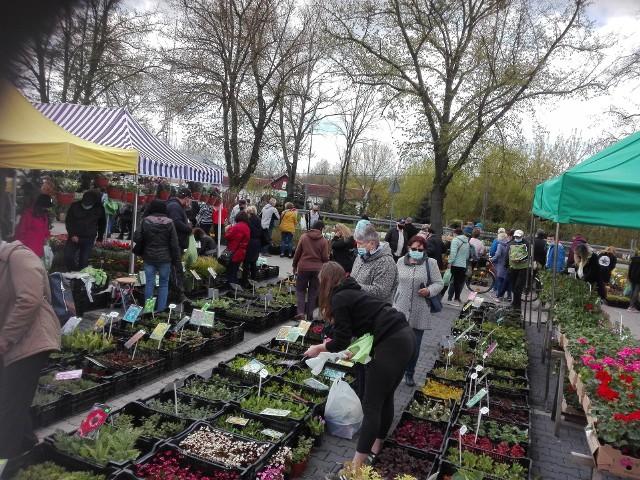 Wiosenne Zielone Ogrody nad Odrą. Pierwszy dzień