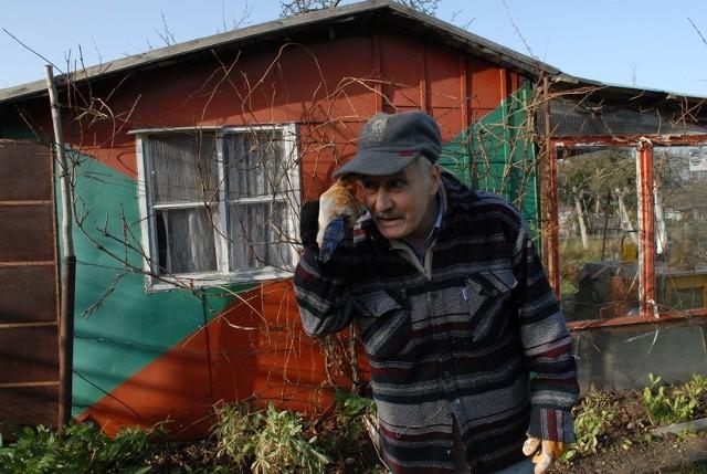 """Zielonogórski działkowiec Józef Boczkowski zamierza rozbudować swoją altankę. Przepis o ich wielkości uważa za idiotyczny, bo """"jak wypoczywać, to w komfortowych warunkach""""."""