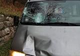 Na drodze w dolinie Popradu drzewo spado na jadący samochód [ZDJĘCIA]