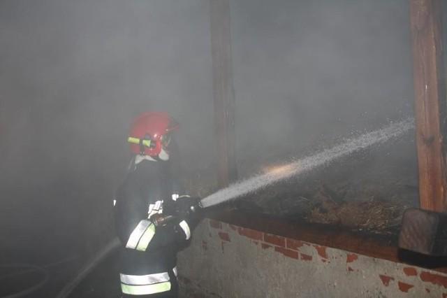 Ogień spowodował łącznie prawie 250 tysięcy złotych strat.