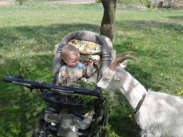 Eko mamy uczą dzieci miłości do natury