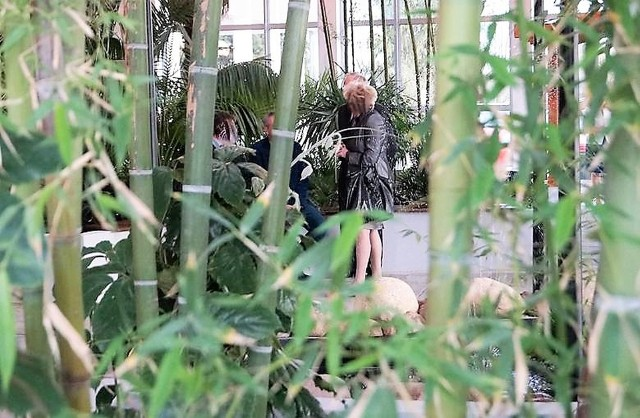 Już niebawem wstęp do solankowej palmiarni w Inowrocławiu będzie płatny