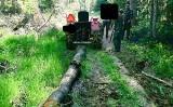 Straż leśna w akcji. Połączone patrole dwóch nadleśnictw namierzyły złodziei drewna i kierowców nielegalnie wjeżdżających do lasu [ZDJĘCIA]