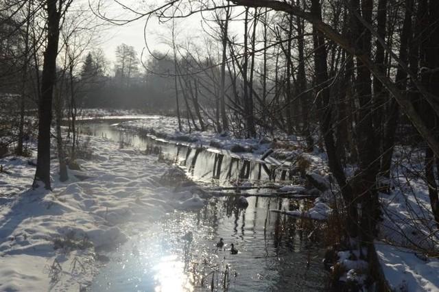 Rozstrzygnięty został przetarg na budowę progu wodnego, który podniesie poziom wody w jeziorze w Trzebielinie. Ma to poprawić stosunki wodne w tym akwenie, który z czasem przestanie zarastać.