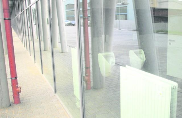 Pisuary za szklaną szybą robią podobną karierę jak zdjęcia dwóch sedesów w jednej ubikacji w wiosce olimpijskiej w Soczi