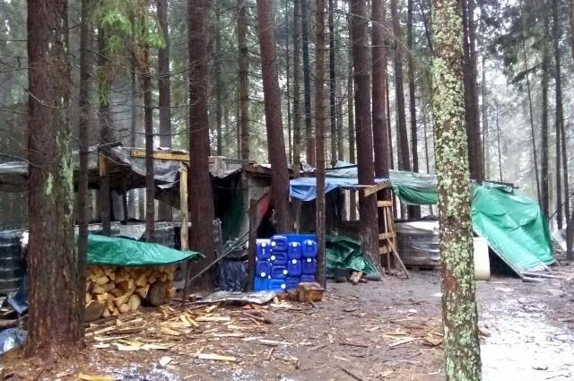 Bimbrownicy produkowali nielegalny alkohol w lesie koło Krynek