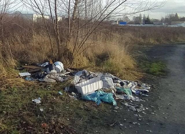 Likwidacja dzikich wysypisk kosztowała w obiegłym roku miasto (czyli łodzian) 1,5 mln zł.