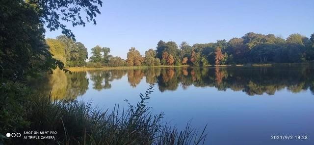 Od kilku lat małe jeziorka w okolicach Łęczna oraz Tyczewa w powiecie białogardzkim nie mają dzierżawcy